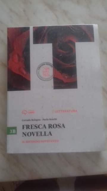 Fresca rosa novella.Vol. 3B: il secondo novecento