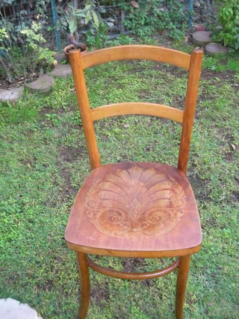 Sedia faggio curvato seduta in legno