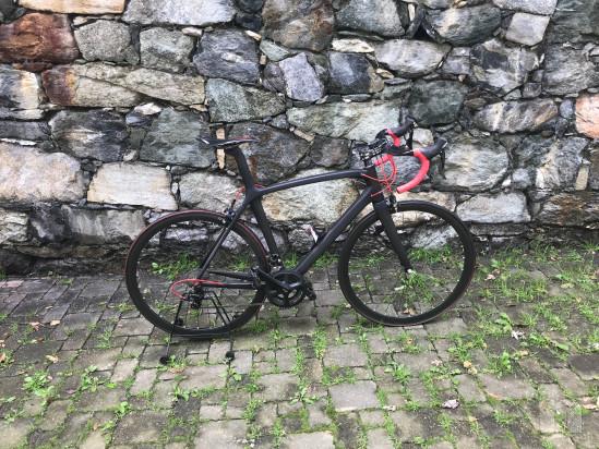 bici da corsa/strada full carbon