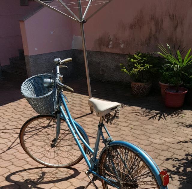 Bicicletta da donna vintage funzionante 26