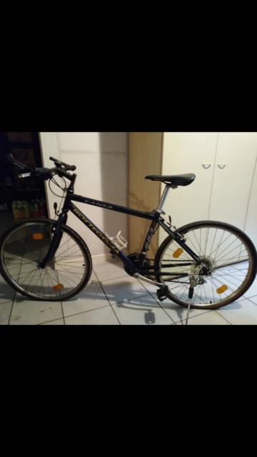 "Mountain bike ""bottecchia"" ruote da 26"