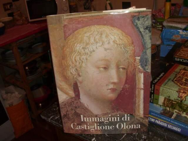 Immagini di Castiglione Olona