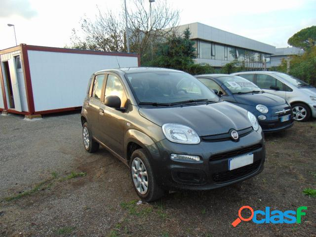 FIAT Panda gpl in vendita a Viterbo (Viterbo)