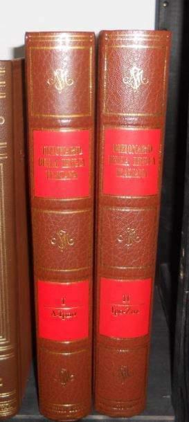 Dizionario di federico motta in due volumi
