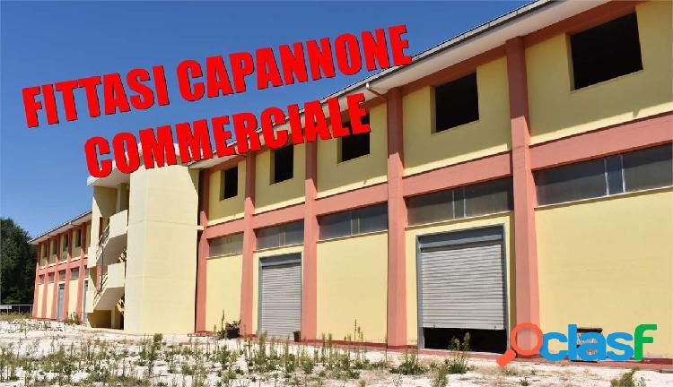 CAPANNONE MQ. 2.000 ZONA VIA CASTEL DEL MONTE
