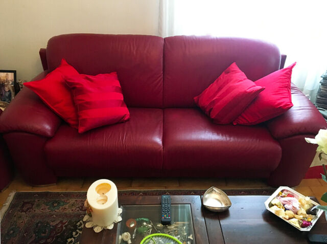 Coppia di divani in pelle da 2 e 3 posti