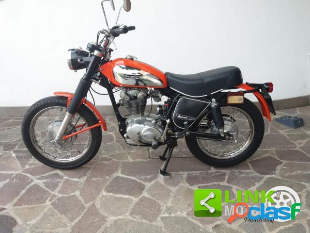 Ducati Scrambler 350 benzina in vendita a Borgo Veneto