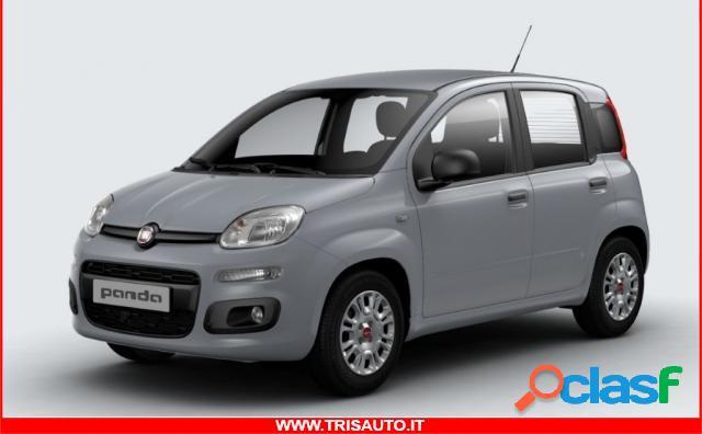 FIAT Panda benzina in vendita a Taranto (Taranto)