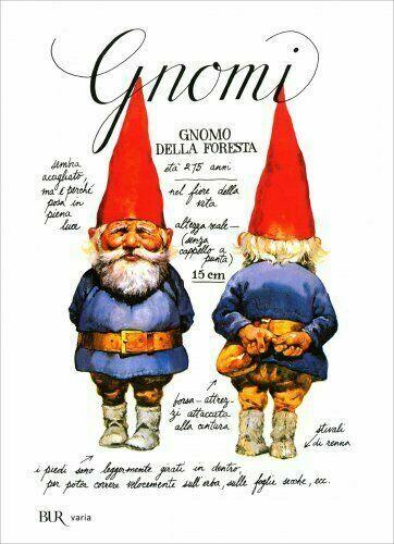 """Libro illustrato per bambini """"Gnomi"""""""
