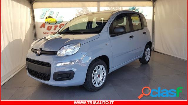 FIAT Panda gpl in vendita a Taranto (Taranto)