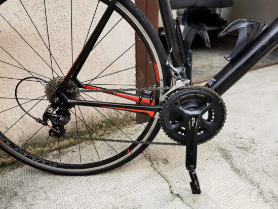 Vendo bici da corsa focus cayo 105 carbonio 11v