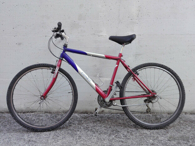 Mountain bike da uomo tenuta molto bene