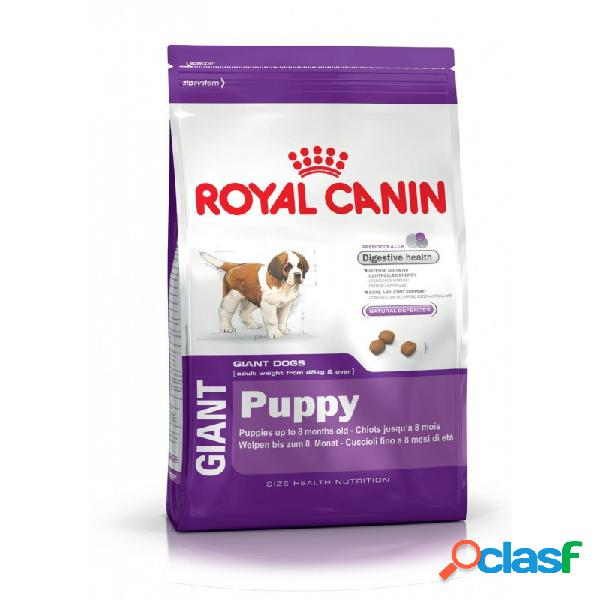 Royal Canin - Royal Canin Giant Puppy Crocchette Per Cani
