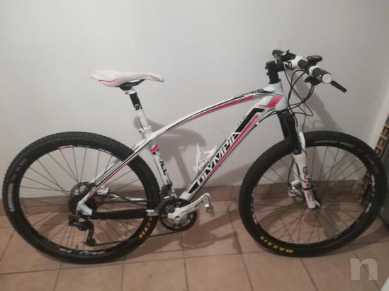 Bici MTB front XC Olympia Bull b)