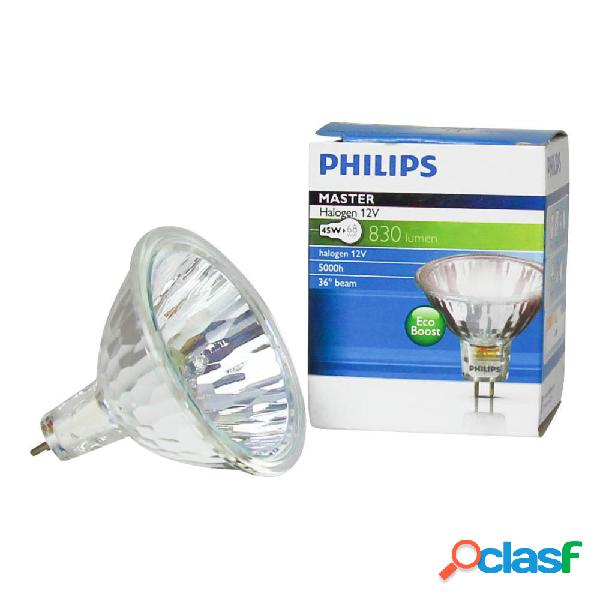 Philips MASTERLine ES 45W GU5.3 12V 36D - 18144