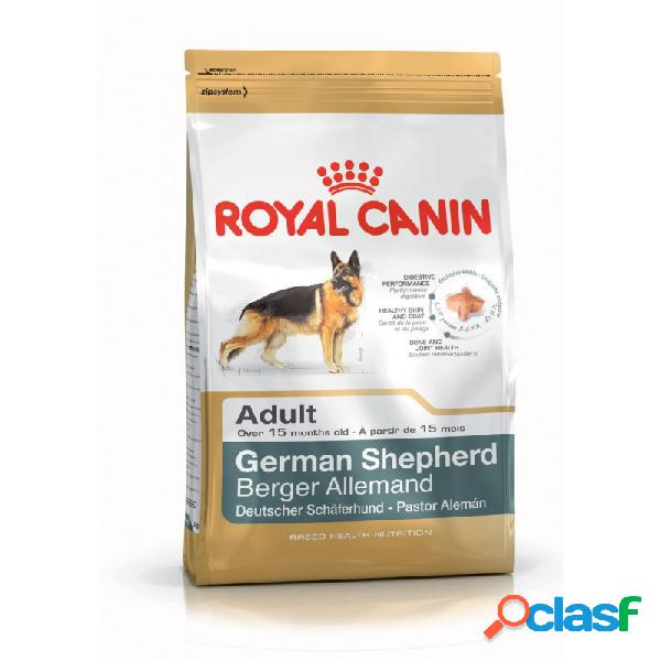 Royal Canin Razze - Royal Canin Pastore Tedesco Adult Sacco