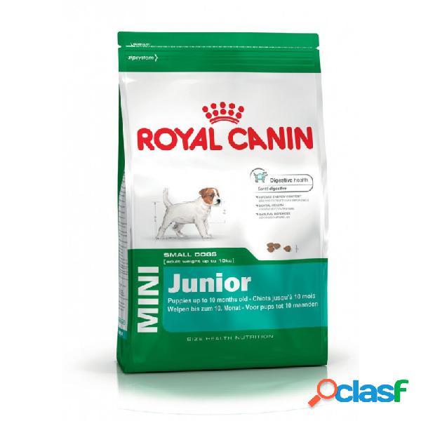 Royal Canin - Royal Canin Mini Junior Per Cani Sacco Da 2 Kg