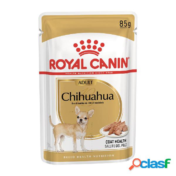 Royal Canin dog Adult Chihuahua 85 gr.