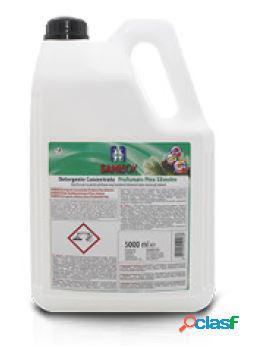 Sanibox igienizzante profumato ml 5000 al pino silvestre