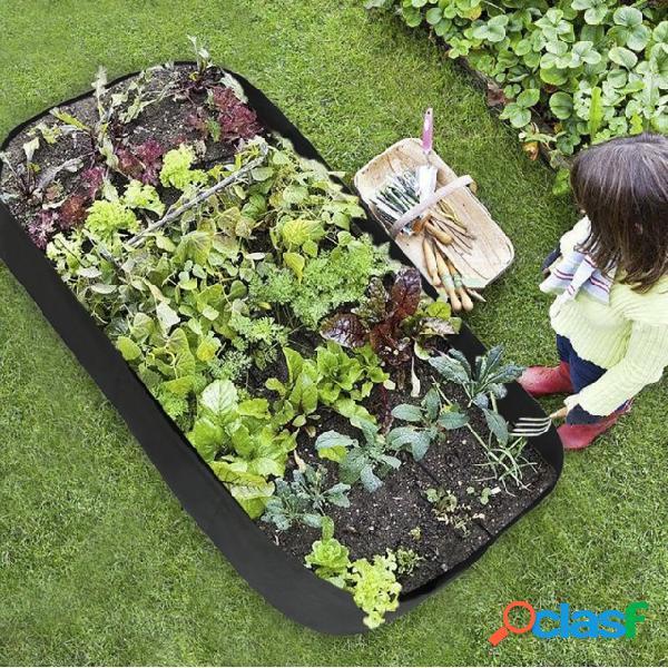 Piantina da giardino Piantagione di contenitori rettangolari