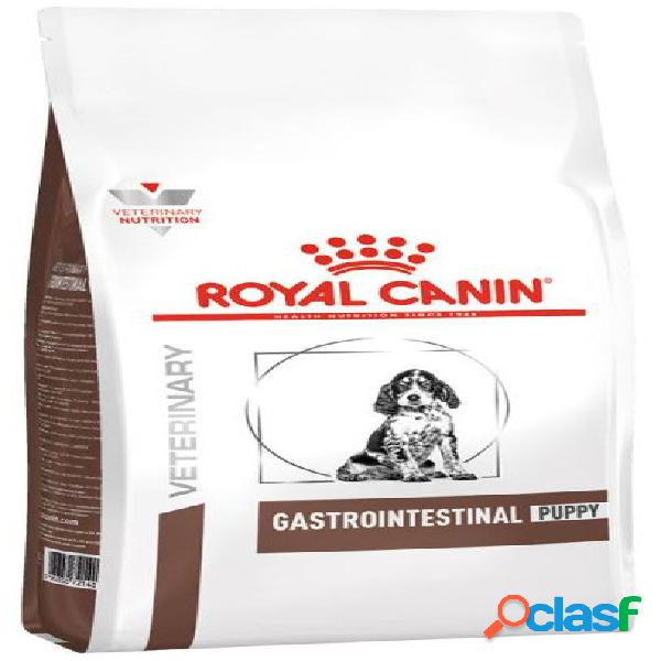 Royal canin diet cane gastro intestinal puppy 2,5 kg