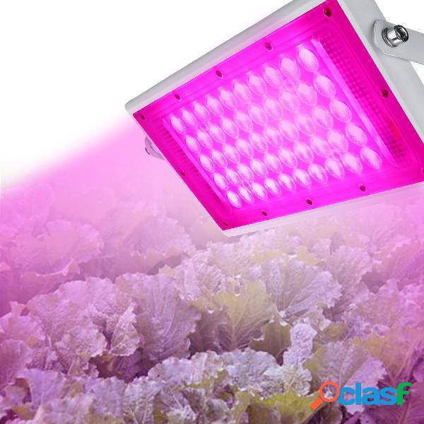 Spettro completo da 50W LED Coltivazione di fiori da esterno