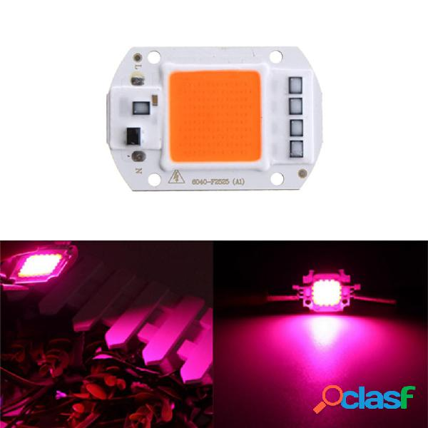 50W Full Spectrum LED COB Chip Plant Grow Light AC220 / 110V