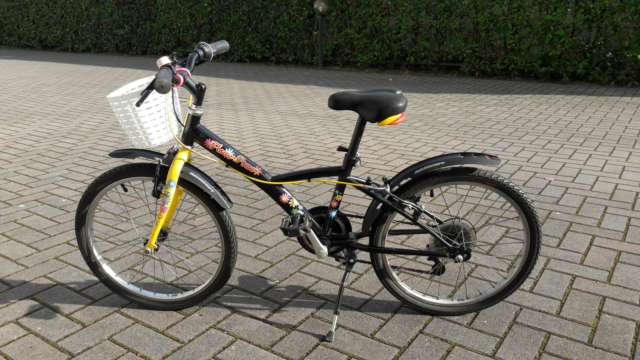 Bicicletta bambina
