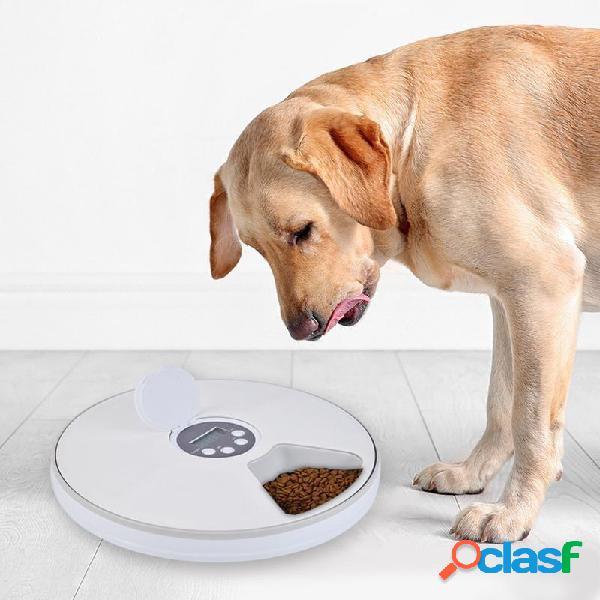 Alimentatore automatico automatico per animali domestici