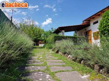 Villa in Affitto a San…