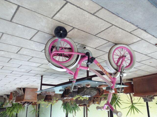 Bicicletta a bimba 3/5 anni, marca Patty Dino
