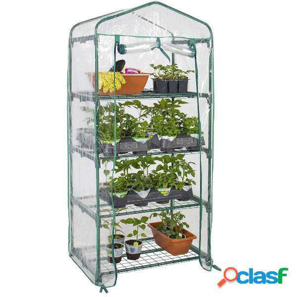 Mini serra per piante da giardino allaperto da serra a 4