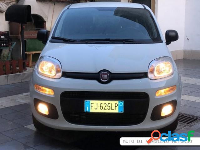 FIAT Panda diesel in vendita a Napoli (Napoli)