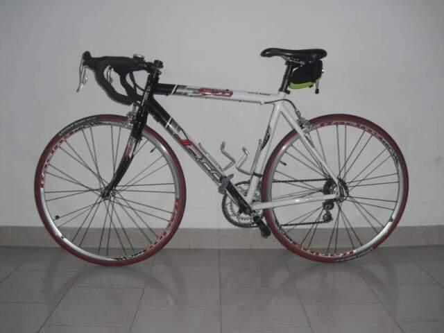 Bici da Corsa con forcella in carbonio cambio Campagnolo