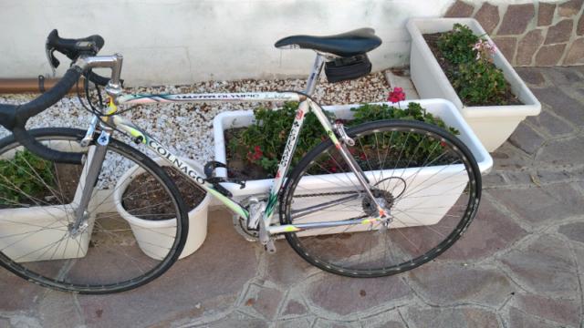 Cerco: A c qui sto vecchie bici da corsa