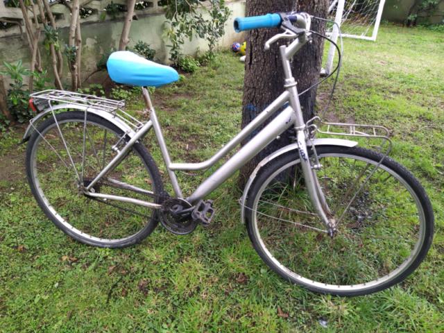 Bicicletta uomo donna citybike
