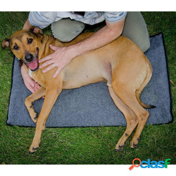FitPAWS Tappetino per lo Stretching per Cani K9FITbed M/L