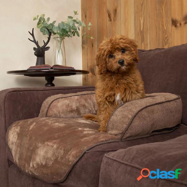 Scruffs Divano Letto per Cani Chester Choco M