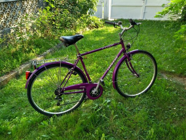 Bicicletta City Bike Legnano uomo  Taglia L